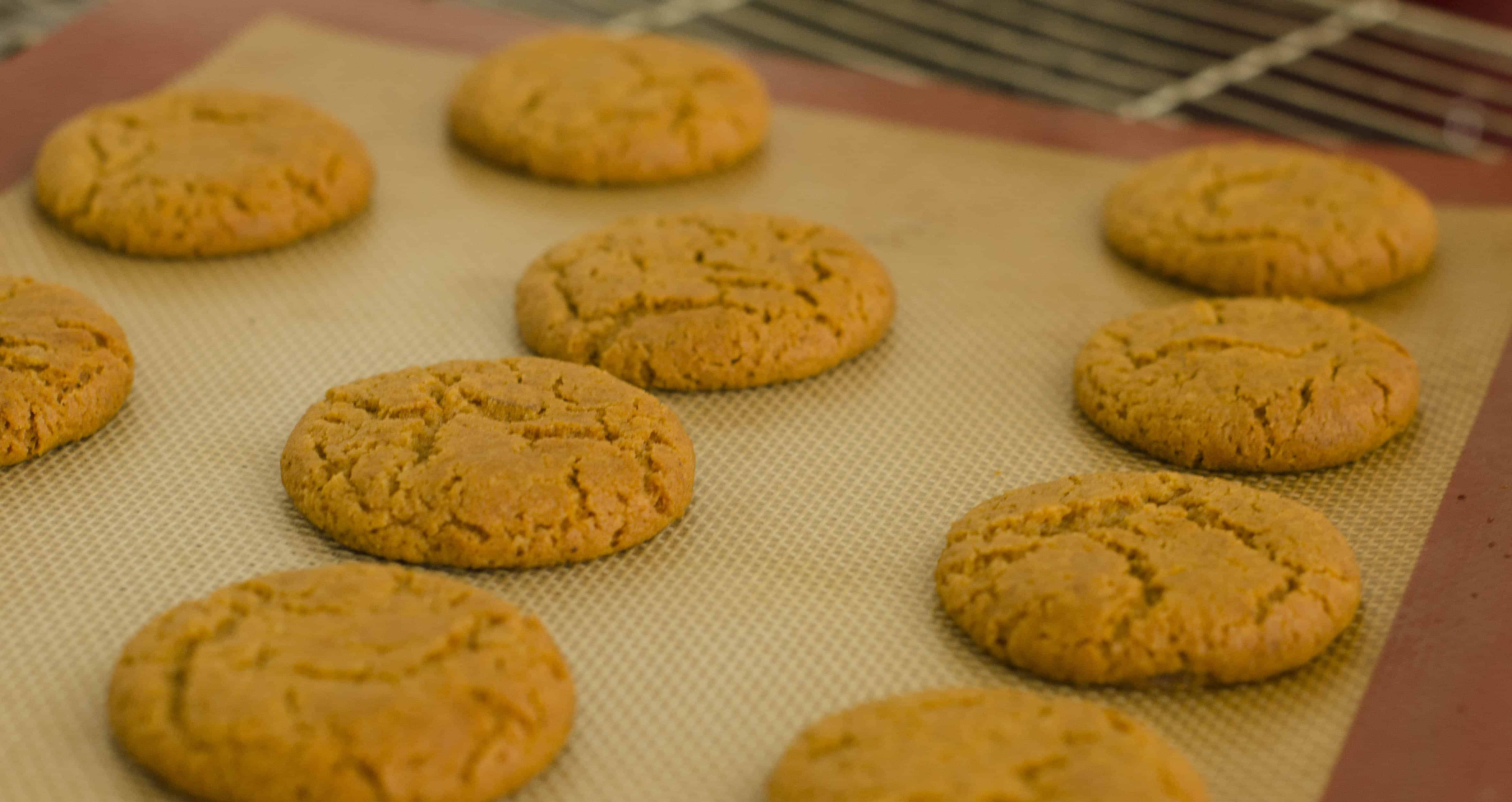 Ginger Chilli Biscuits out of oven