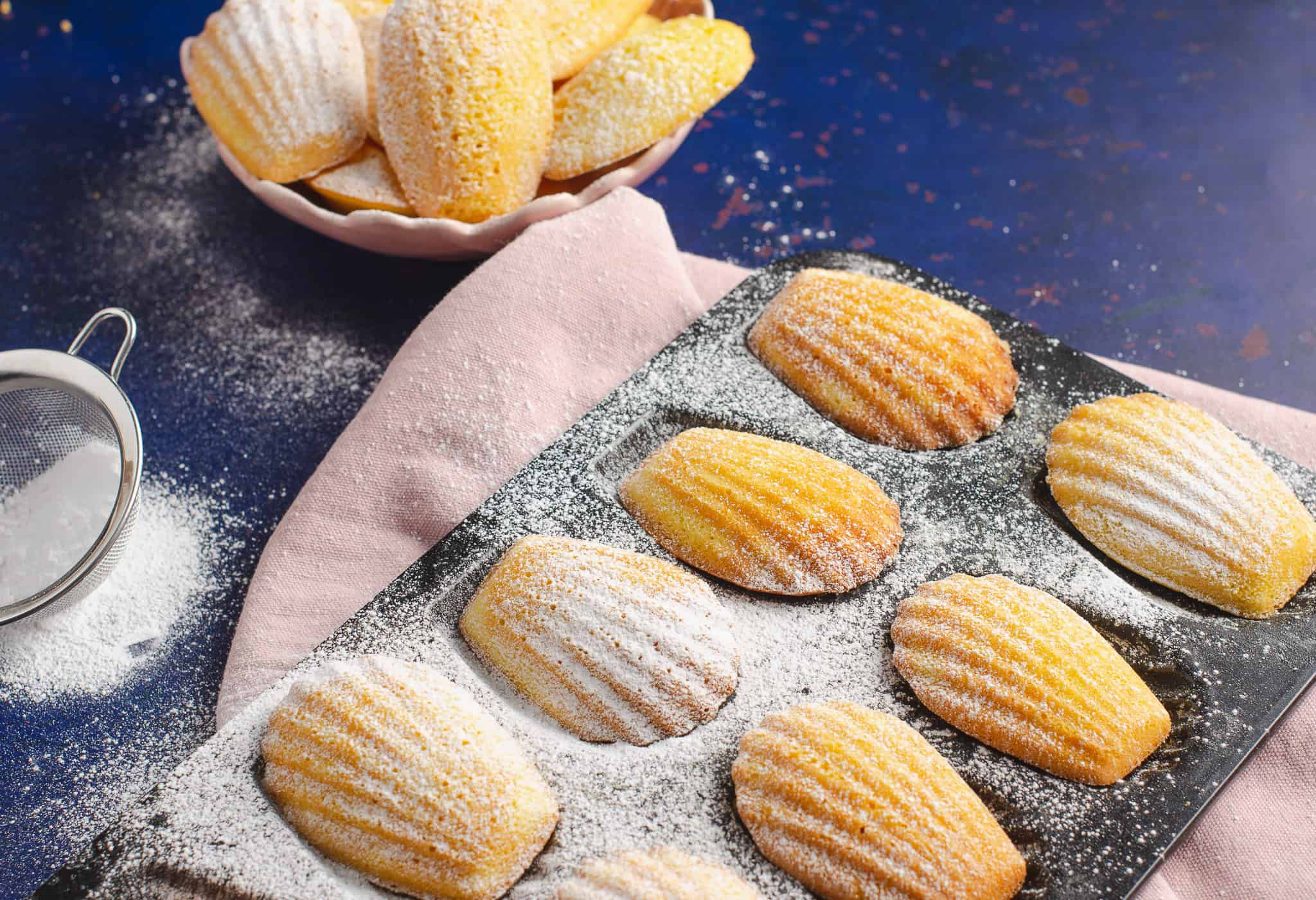 Lemon Madeleines in a baking tray dusted with icing sugar on dark blue backdrop