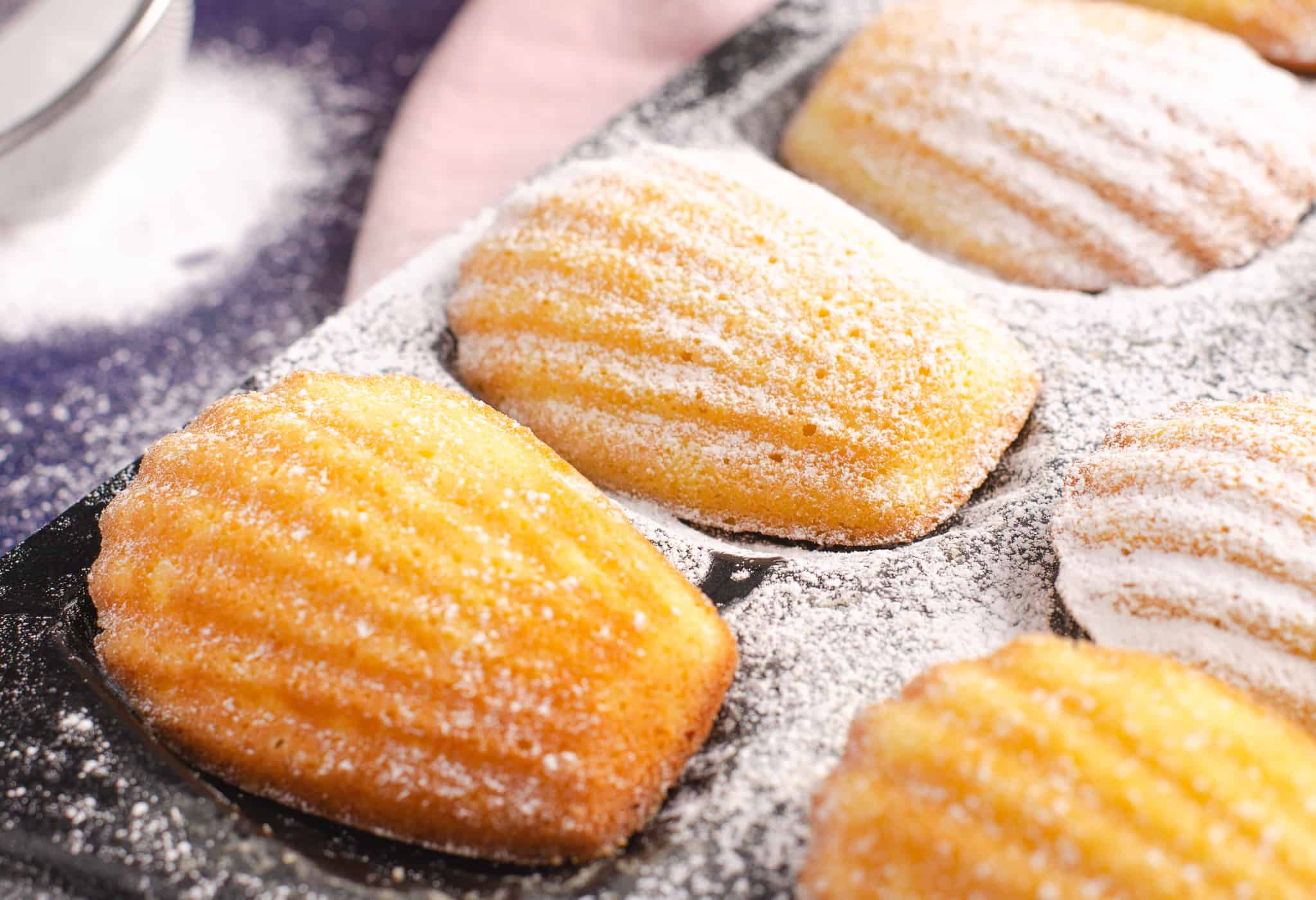 Close up of lemon Madeleines in a baking tray dusted with icing sugar